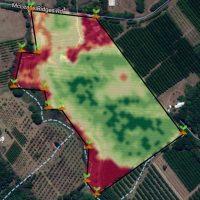 Farmonaut_Satellite_Monitoring (5)